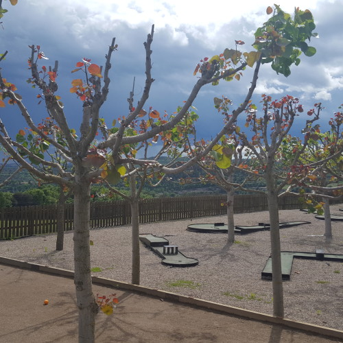 minigolf-turismo-casa-rural