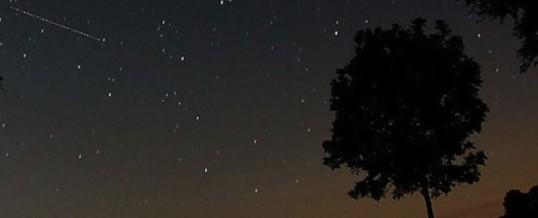 Mira les estrelles del cel