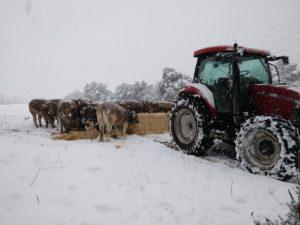 Nevada-casa-rural-agroturismo